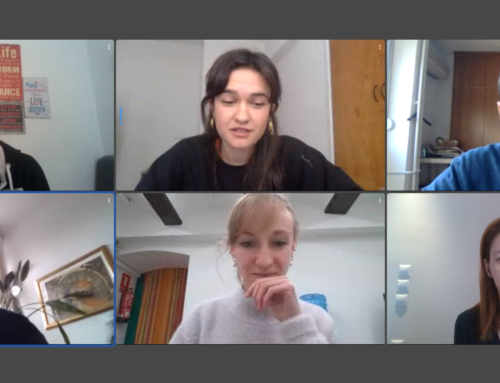 First Online Meeting of the ClimateYouths Project