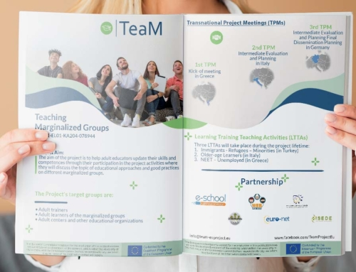 New Flyer of TeaM Project