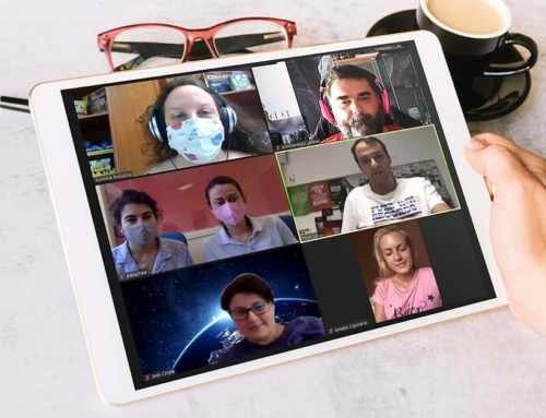 ONLINE MEETING of ID GAMES PROJECT